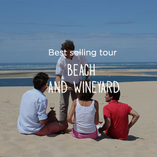 BEACH AND WINEYARDS